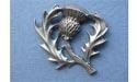 Thistle Brooch - Lead Free Pewter